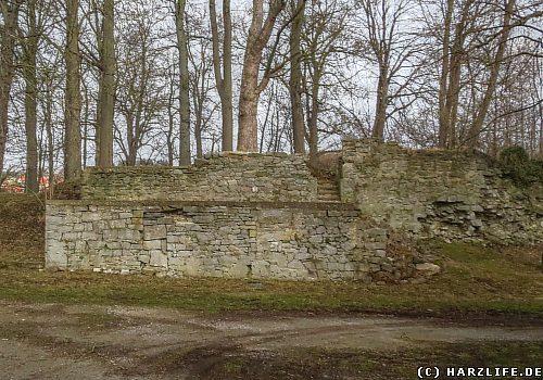 Die Burg- und Schloßruine in Elbingerode