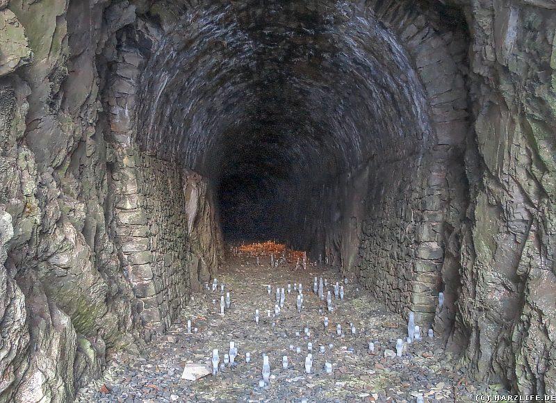 Tropfsteinhöhle auf Zeit