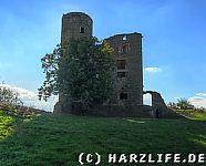 Palasruine und Bergfried