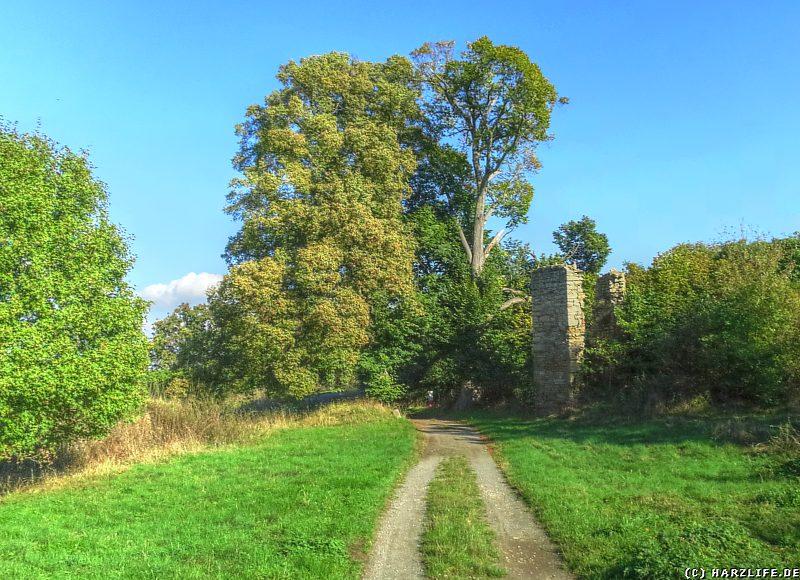 Burgruine Arnstein - Ruinen auf dem Gelände der Vorburg