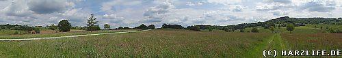 Naturschutzgebiet Hainholz